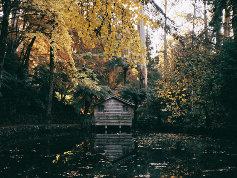 autumn, alfred nicholas garden melbourn, autumn in melbourne
